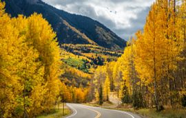 Telluride Colorado Fall Colors Getty Images