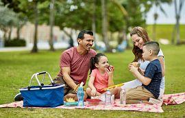 Family picniking in the park