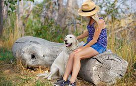 Solstice Lifestyle Woman Dog Sitting Log