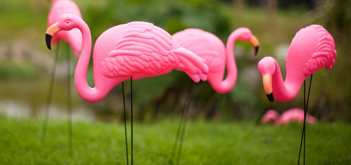 Plastic Pink Flamingos Getty Images