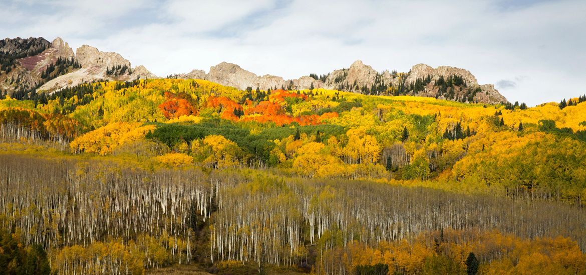 Kebler Pass Colorado Fall Colors Getty Images