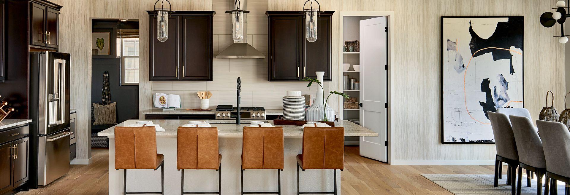 Solstice Stargaze Morningside Kitchen