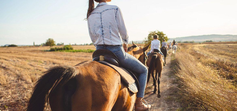 Woman Horseback Riding Field