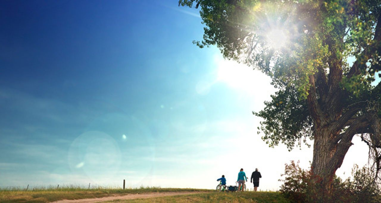 Solstice Lifestyle Trail Walking