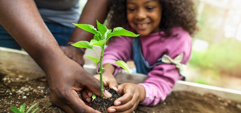 Girl Planting Outdoor Garden