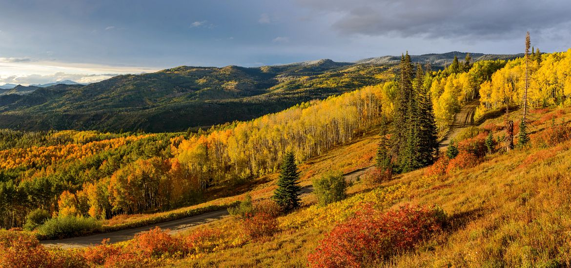 Steamboat Springs Colorado Fall Colors Getty Images