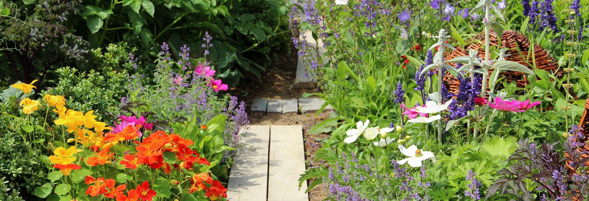 Herb Vegetables Flower Garden Getty Images