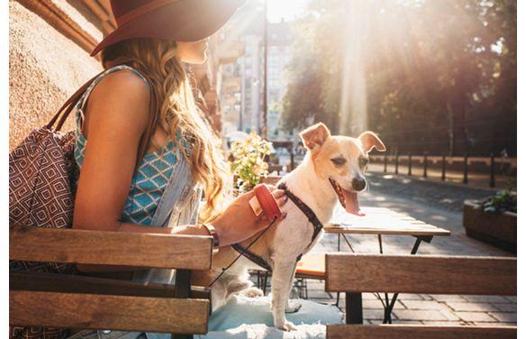 Lyric Woman Dog Sitting Outside