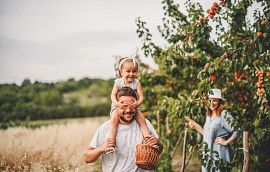 Young Family at an Orchard