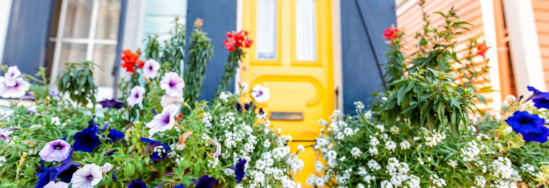 Flower Pots Front Porch Decor Yellow Door Getty Images