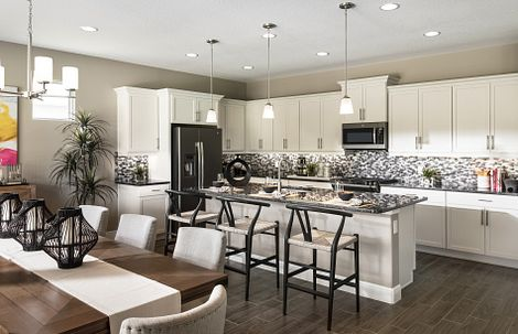 Trilogy at Ocala Preserve Liberty Model Home Kitchen